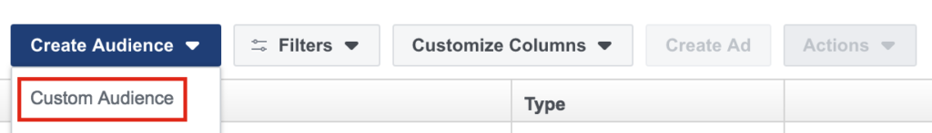 Selecting custom audience from Facebook Business Manager.